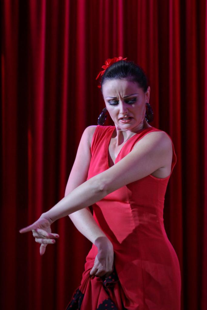 Compagnie roses des sables - animations - soirée percussions - flamenco