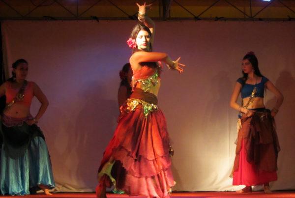 sur la route du flamenco danse gitane 2